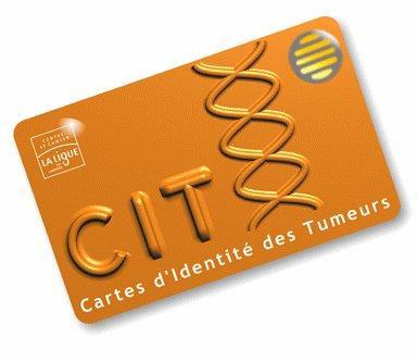 Carte d'Identité des Tumeurs (CIT)